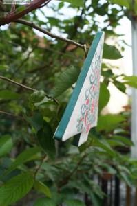Sapin2 Jardin privé