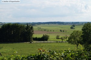 PEA paysage02